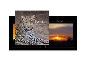 Kenia - Wildlife-Safari