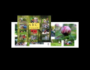 ABC de mon jardin