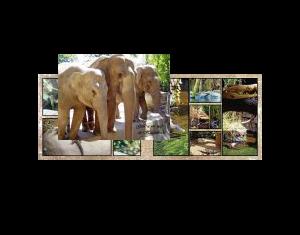Zoo d'Hagenbeck