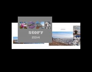 Homestory 2014