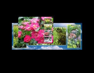 Die vier Jahreszeiten in unserem Garten