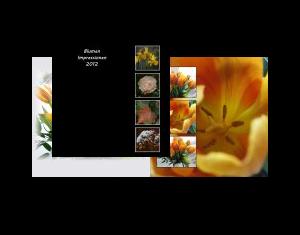Blumen Impressionen 2012