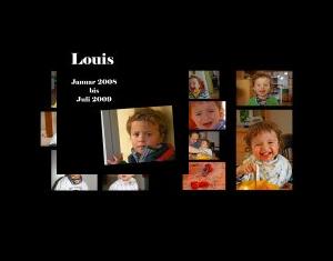 Louis 2008-2009