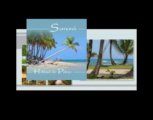 Samana Halbinsel der Palmen
