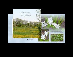 Impressionen vom Frühling